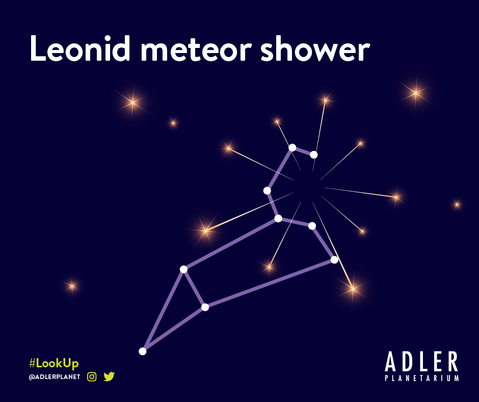 Graphic representation of the Leonid meteor shower with the constellation Leo.