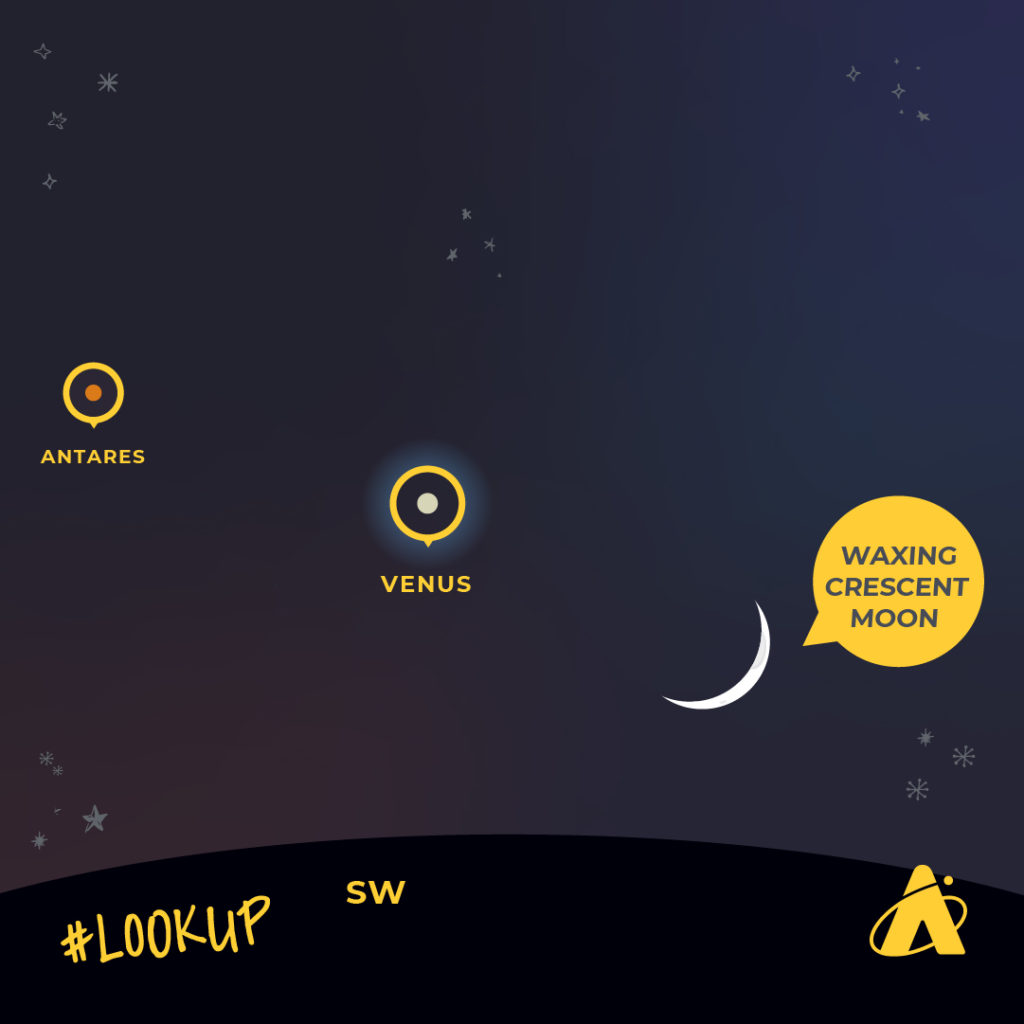 """Adler Planetarium """"LookUp"""" graphic depicting where """"Antares"""" """"Venus"""" and the """"Waxing Crescent Moon"""" will be in the night sky."""