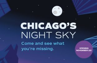 Chicago's Night Sky - Opening November 22, 2019! Come in and see what you're missing!