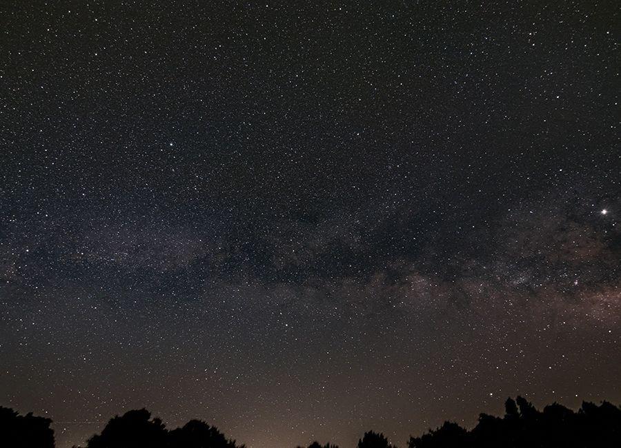 Blog | Adler Planetarium