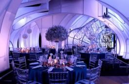 The Adler Planetarium's Celestial Ball.