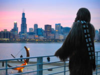 Chewbacca standing outside the Adler Planetarium looking out at the Chicago skyline during an Adler After Dark event. Image Credit: Katie Sater