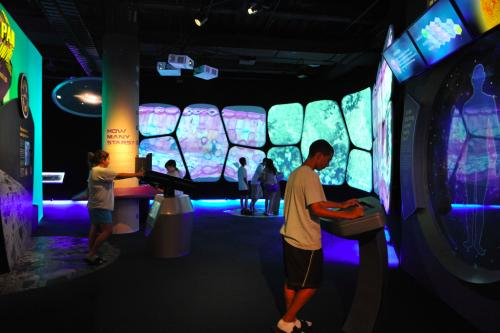 The Adler Planetarium's 'The Universe: A Walk Through Space and Time' Exhibition