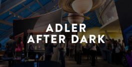 Adler After Dark Press Materials